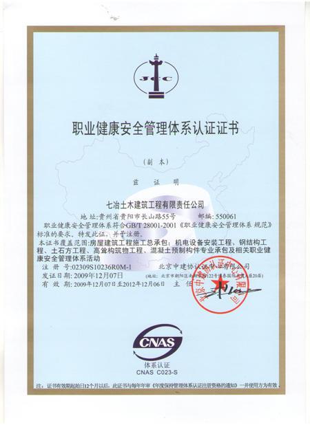 职业健康安全管理体系(中)